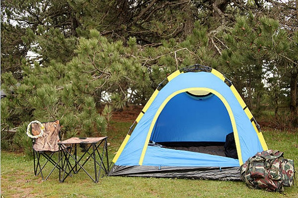 Backyard Camping (1)