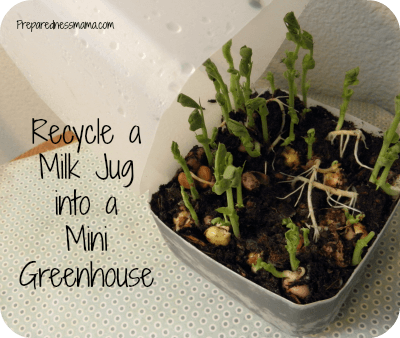 Earth Day Seed Starter Milk Jug Greenhouse
