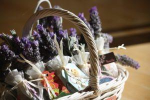 lavender-1902943_640
