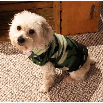 Big Feet Pajamas Green Camouflage Fleece Hooded Sweater for Dogs. Double  tap to zoom 5affcbba3