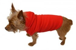 Big Feet Pajamas Red Fleece Hooded Sweater For Dogs