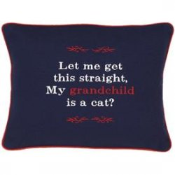 """Let Me Get This Straight, My Grandchild is A Cat?"" Navy Embroidered Gift Pillow"