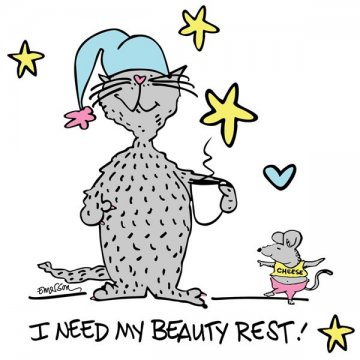 """Emerson Street """"I Need My Beauty Rest"""" Nightshirt in a Bag"""