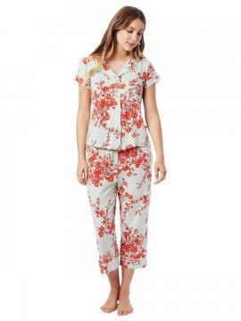 The Cat's Pajamas Women's Ivy Pima Knit Capri Pajama Set